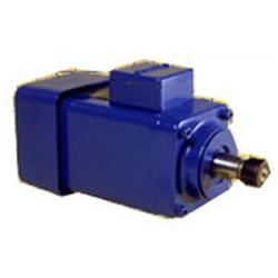 Perske VS 50 09 23HP spindle motor